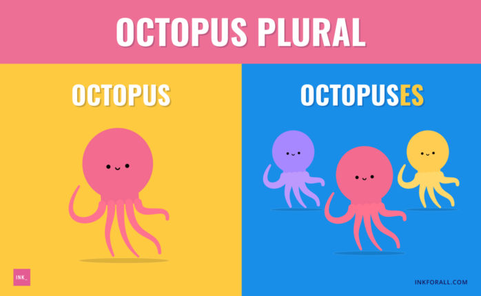 Octopi, octopuses, and octopodes are all acceptable plural forms of the word octopus.